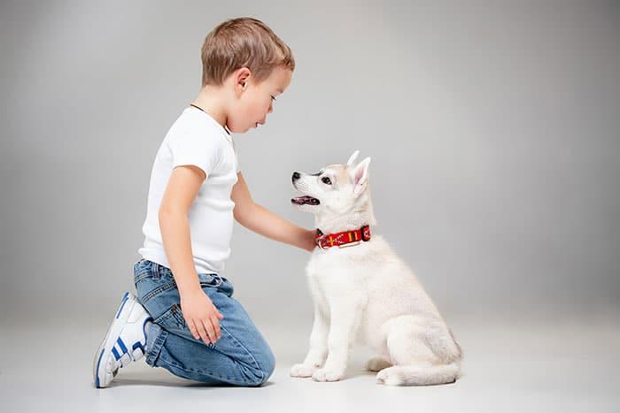 Thu cưng giúp trẻ nhỏ tăng sự đồng cảm