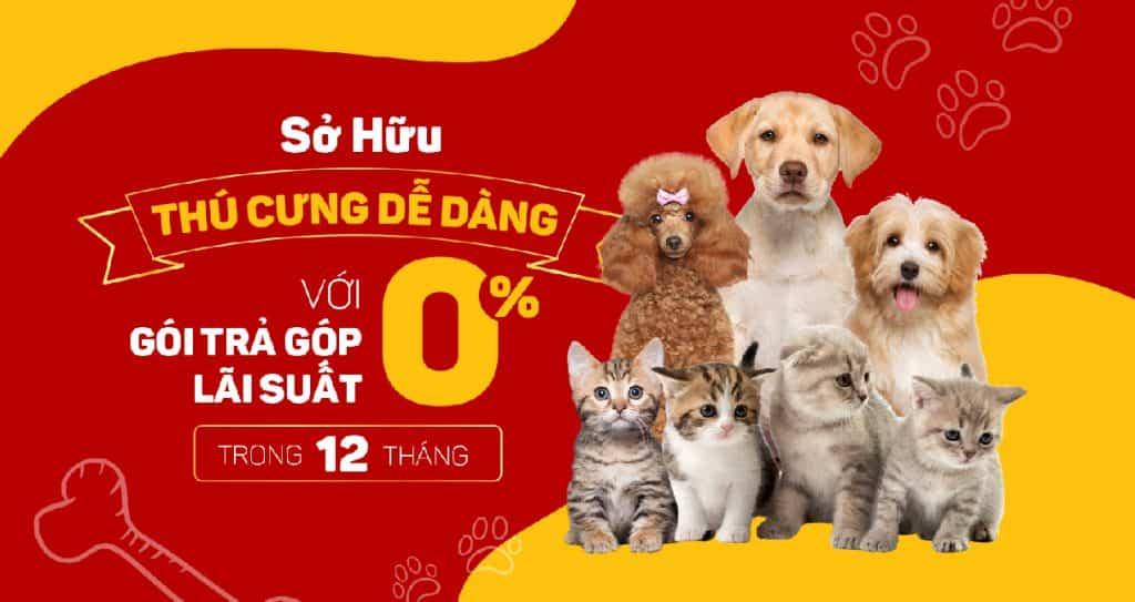 Trả góp mua thú cưng
